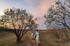 Jahanje-ranch-terra-12