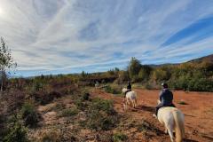 Jahanje-ranch-terra-16