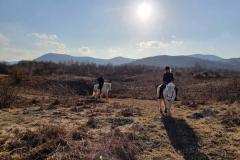 Jahanje-ranch-terra-2