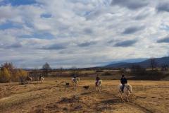 Jahanje-ranch-terra-31